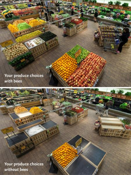 Produce with and without bees