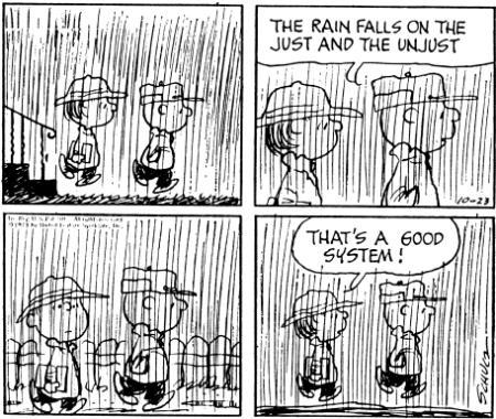 Peanuts - Democracy of Rain