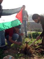 Palestinian Nonviolent Protest