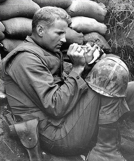 Sergeant Frank Praytor feeds kitten during Korean War