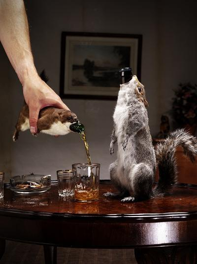 Brew Dog Taxidermy