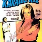 <i>Karateci Kiz</i> as Art