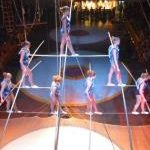 Safety Nets in the Circus and Economy