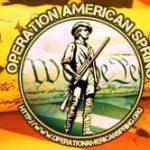Anti-Constitutional Constitutional Conservatives