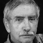 Edward Albee's Anti-Romantic Vision