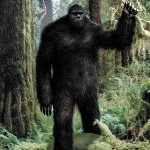Bigfoot or Hikers Caught on Video