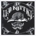 6- and 12-String Guitar - Leo Kottke