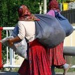 Romanian Gypsies and the the Secret to Nazism
