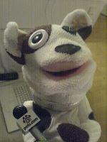 Pets.com Sock Puppet