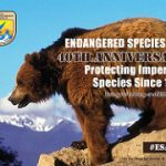 Anniversary Post: Endangered Species Act