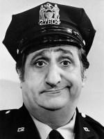 Clueless Cop