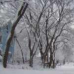 Minnesota Advice for Those Suffering the Cold Weather in the East