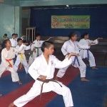 Martial Arts Classes for Kids and Civilization's End