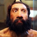 Neanderthals Might Have Stopped Us All from Being Donald Trump