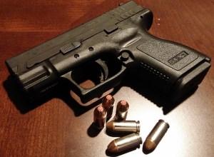 Hand Gun Law Reform