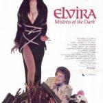 <em>Elvira, Mistress of the Dark</em> Review of Sorts