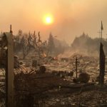 My Life and Work in the California Fire