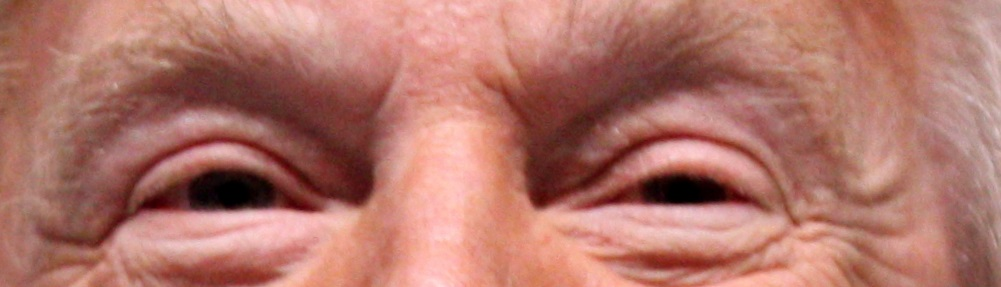 Donald Trump's Eyes