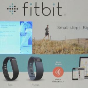Fitbit Go365
