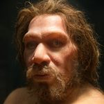 Sam Harris Was Right About Neanderthals
